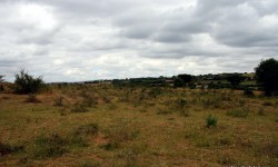 Property along Mombasa road or sale near Machakos junction