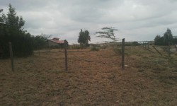 Plot for sale in Kitengela Milimani
