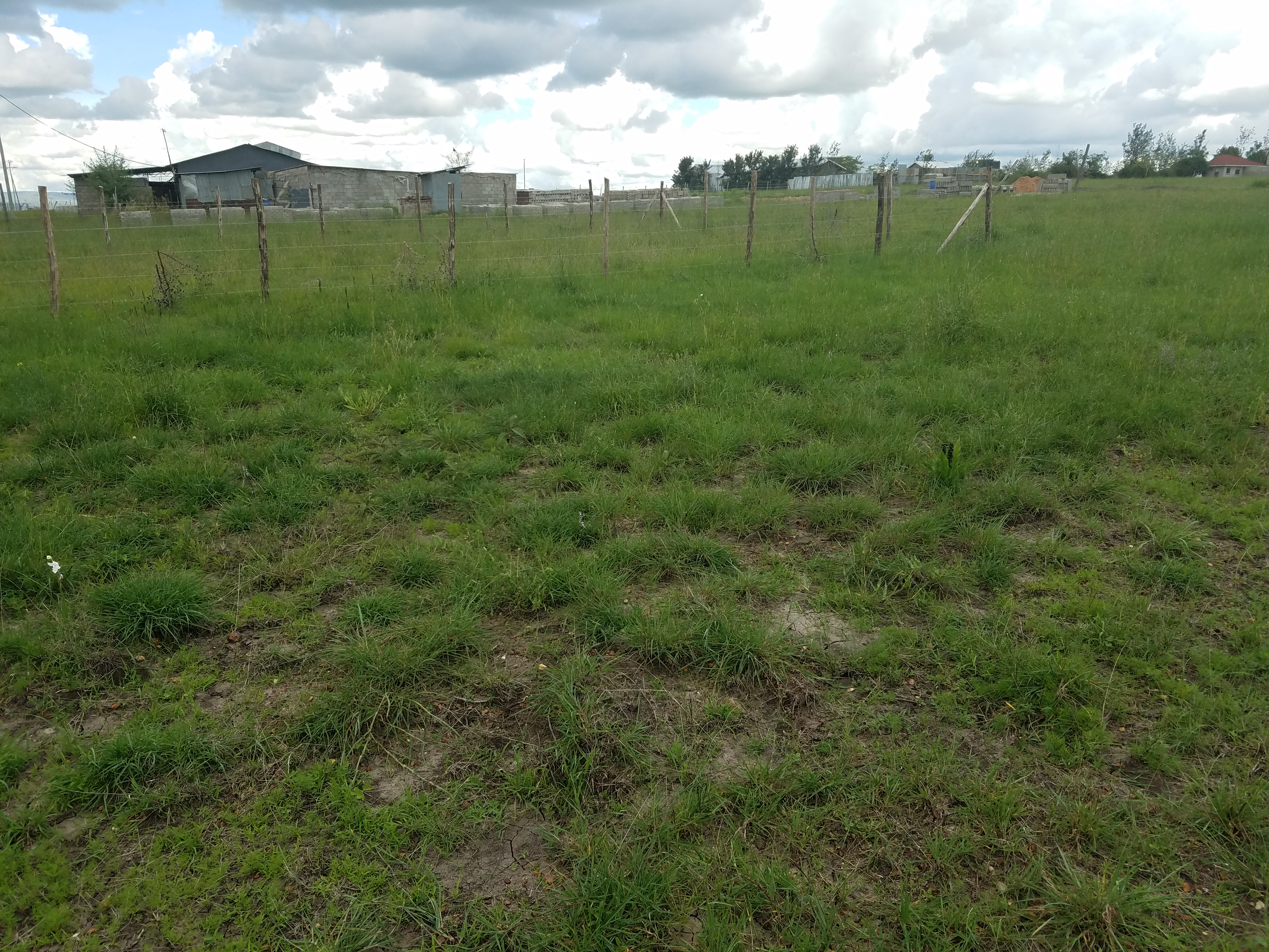 Plots for sale in Kitengela Acacia