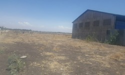 Plot for sale in Kitengela Kisaju