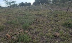 Plots for sale in Korrompoi Kitengela
