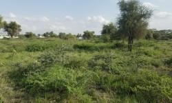 2.25 Acre Land for sale in Kitengela