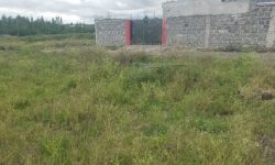 Plots of Land for sale in Kitengela Sifa Farm