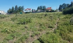Land for sale in New Valley Kitengela