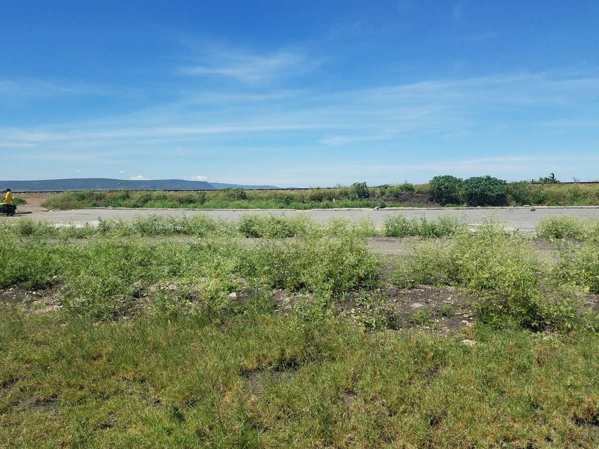 Land for sale in Kitengela Balozi road